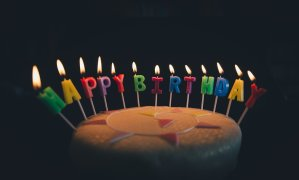 Happy Birthday Bug