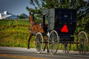 Reuben Schwartz Amish Iridologist